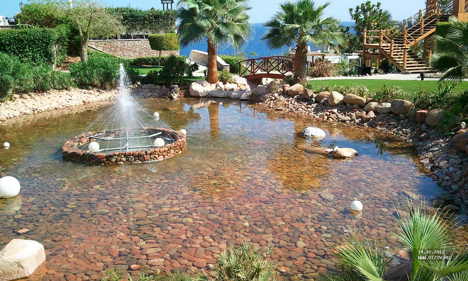 бассейн в отеле Хилтон в Шарм эль Шейхе