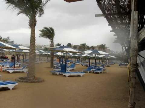 дожди в апреле в Египте