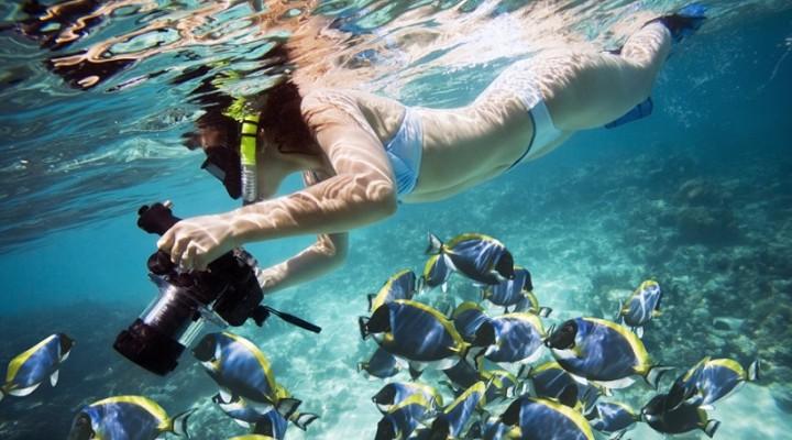 египет подводная охота
