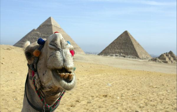 К дельте Нила и пирамидам